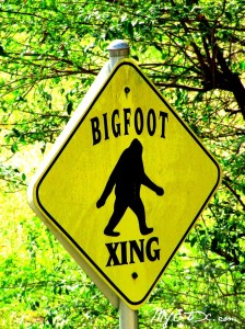 Bigfoot X-ing