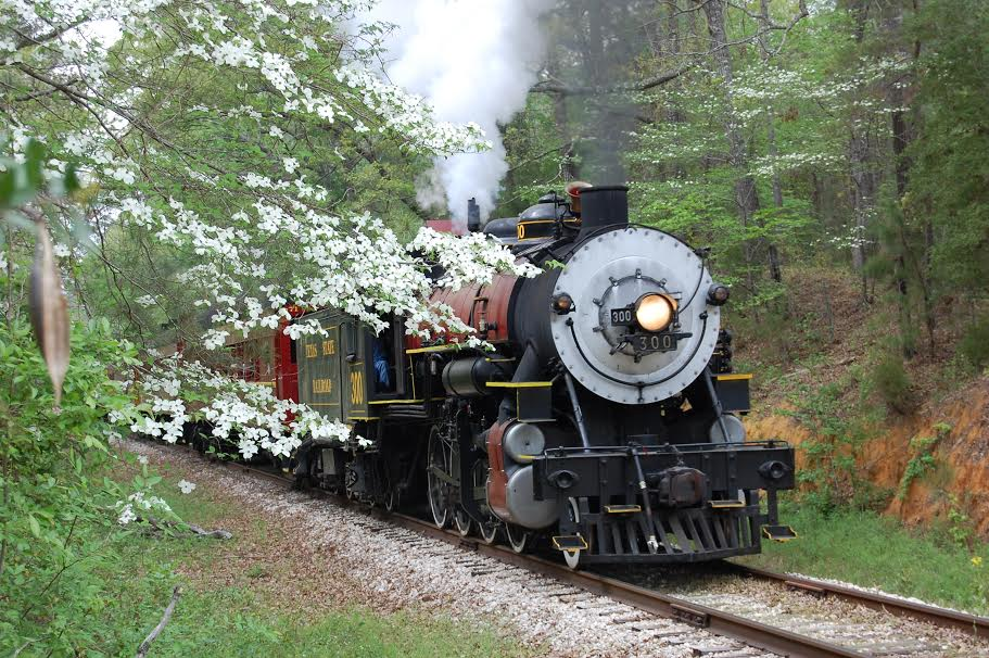 Dogwood Train