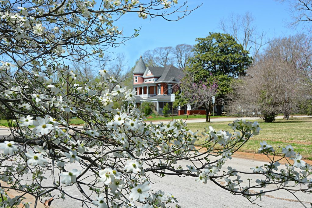 Stop And Smell The Flowers In These East Texas Towns My